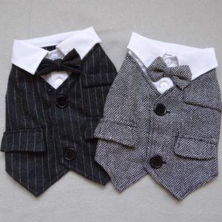 Formal Suit for Pets / Dogs / Cats / Rabbits