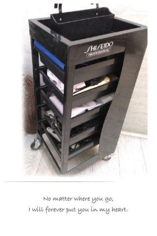 Shiesido 工具車