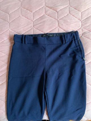 Navy Blue Zara Pants
