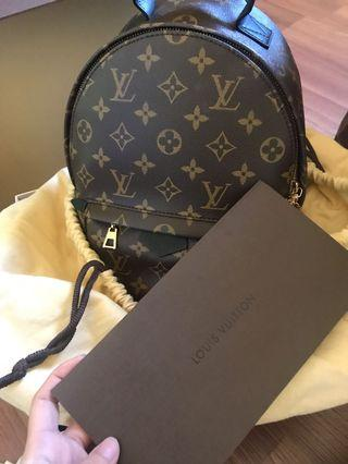 Louis Vuitton BackPack ( S )