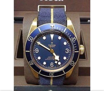 Tudor Blue