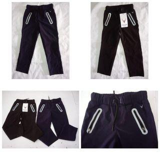 Authentic allen solly dry fit pant