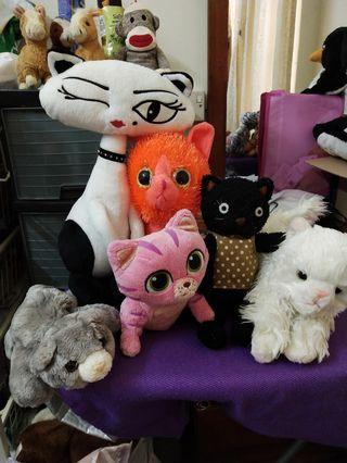Set Kucing