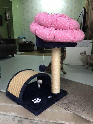 Cat Tree &