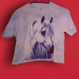 Vintage pastel horse crop tee xs