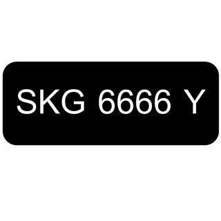 Car Number Plate for Sale: SKG 6666 Y