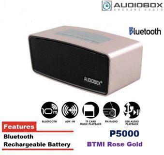 Audiobox P5000 BTMI Bluetooth & FM Radio Portable Speaker (Build In Battery)