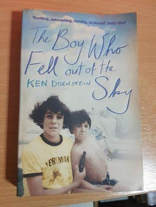 🚚 The boy who fell out of the sky - Ken Dornstein