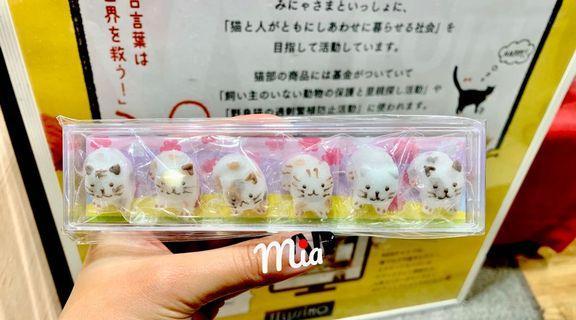 日本貓部店舖限定 小喵造型砂糖