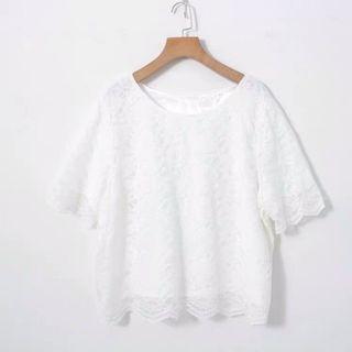 包郵 日系圓領短袖 白色蕾絲襯衫