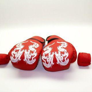 Punching Gloves Boxing Gloves Free Handwraps
