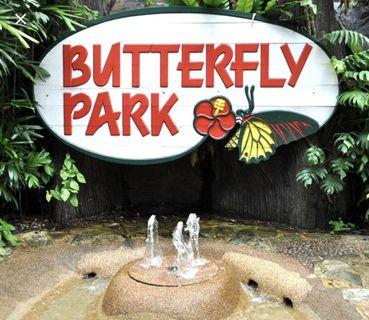 🚚 Butterfly Park & Insect Kingdom Sentosa