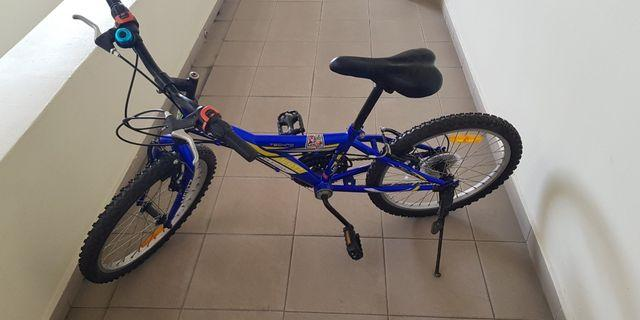 20 inch Mountain Bike (only for today)