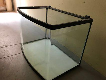 2ft curved Fish tank