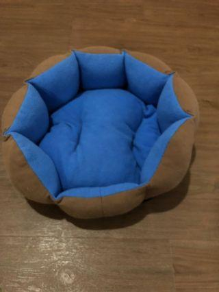 To bless/free small kitten bed
