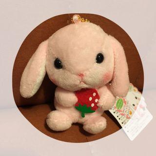 Amuse 🍓 兔仔