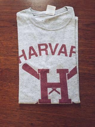 Kaos Harvard Grey