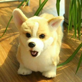 [Pre-Order] Real Life Simulation Cute Welsh Corgi Dog Plush Toy