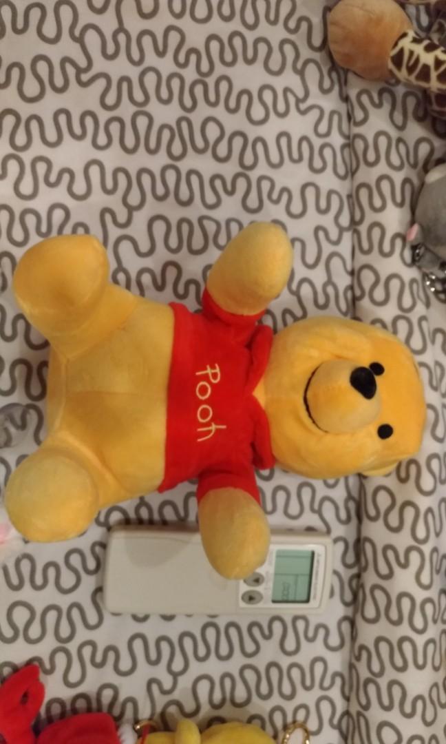 Pooh bear toy