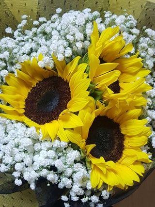 🚚 Sunflower Bouquet | Mother's Day Bouquet #03
