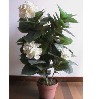 Bunga Buatan Warna Putih