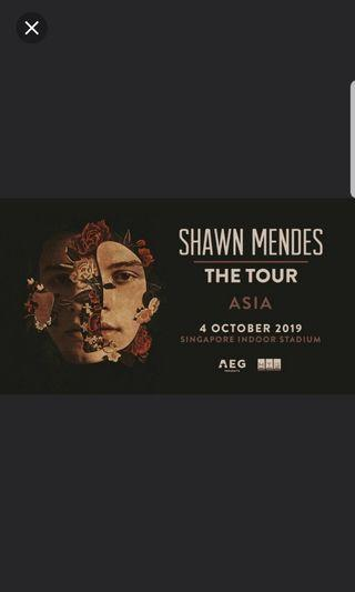 Shawn mendes cat 5 ticket