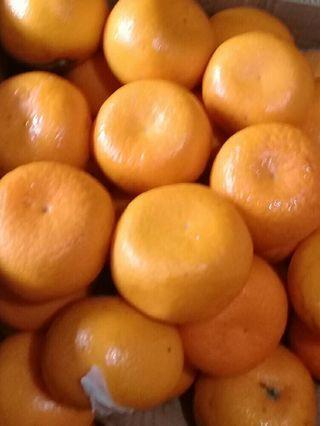 Buah jeruk segar dan manis