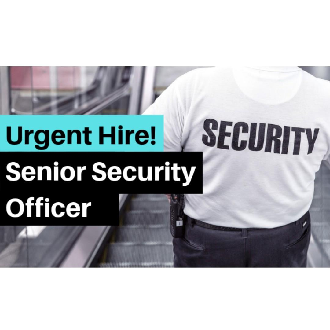 Senior Security Officer