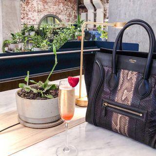 Authentic Limited Edition Celine Python Skin Mini Luggage
