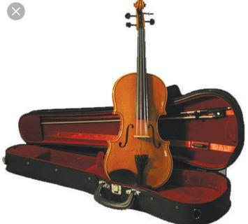 Brand New Mint Condition Violin (Case & Bow Included)