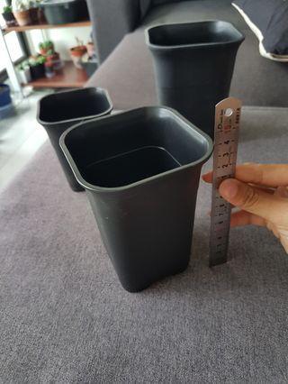 Black square pots 10x14cm (deep for haworthia)
