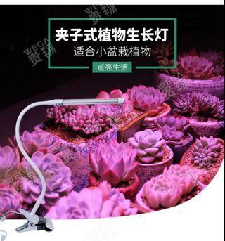 植物補光燈
