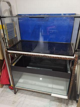 🚚 3ft Fish Tank x 2 with Rack