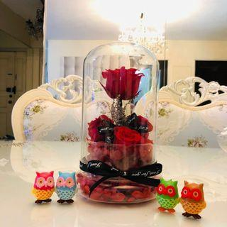 """Preserved Roses in a glass dome (Valentine""""s Day)"""