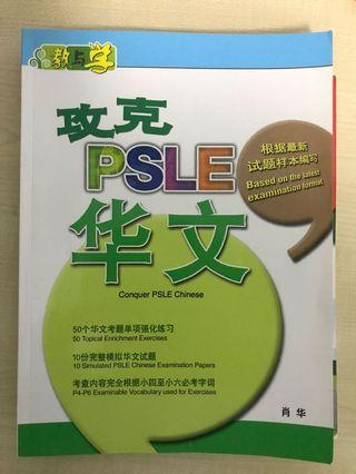 🚚 PSLE chinese workbook