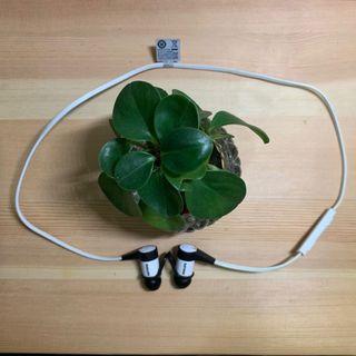 PHILIPS SHB5800 Wireless Bluetooth headphone