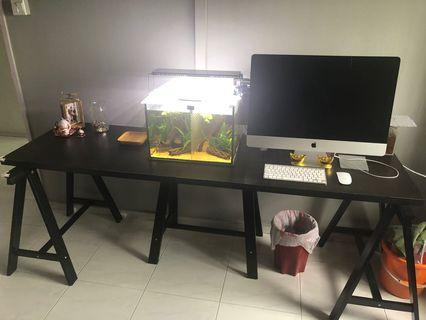 🚚 IKEA long customized table