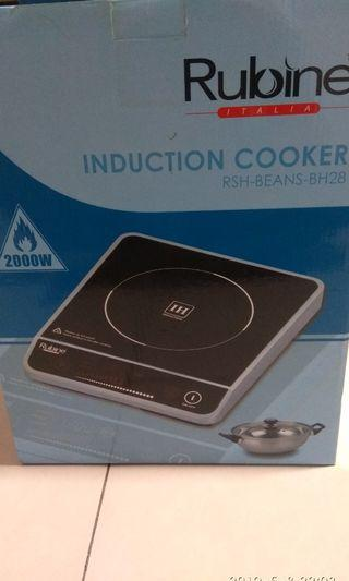 Induction Cooker with induction pot