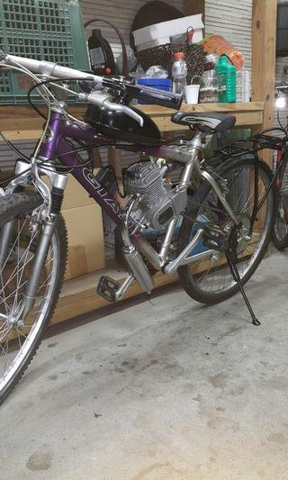 Motorized bicycle/The engine 80cc is New