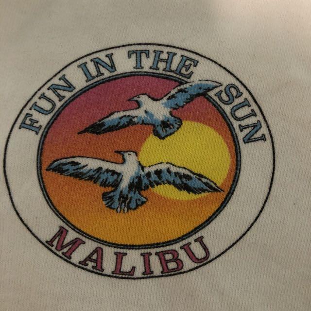 "BRANDY MELVILLE cropped sweatshirt ""fun in the sun"" NEVER WORN"