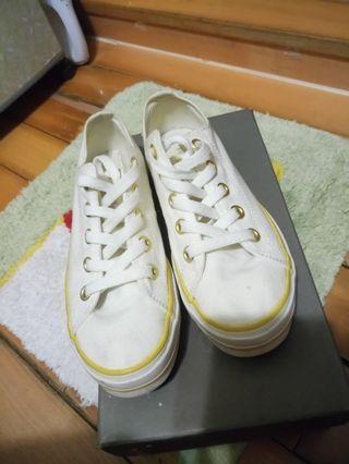 🌰品牌Hush Puppies 白色 帆布鞋