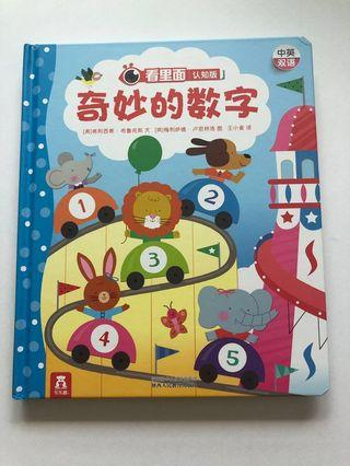 Chinese Book about numbers: 奇妙的数字