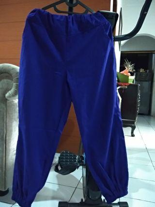 Joger Pants Blue