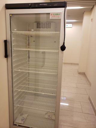 大雪櫃《九成新》