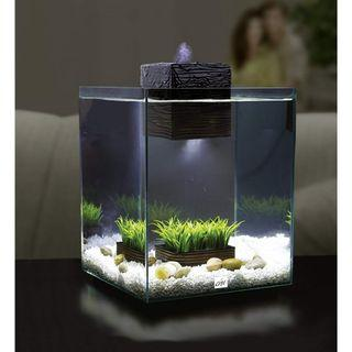 Fluval Chi Aquarium Starter Kit, 5 Gallon (19 Litres), Freshwater Desktop Tank in Home or Office