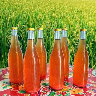 Homemade Traditional Sweet Glutinous rice wine