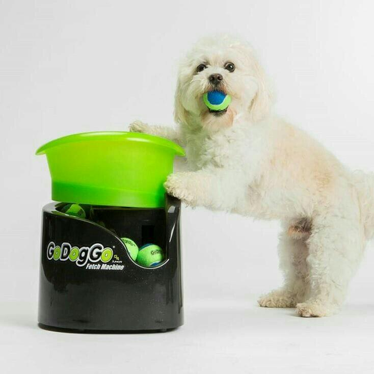 G4 For Dogs Automatic Dog Ball Launcher