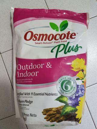 🚚 Osmocote plus 100g (not the normal cheap type)