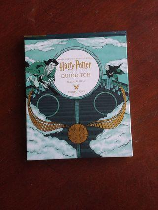 Harry Potter Quidditch Magical Film Projection