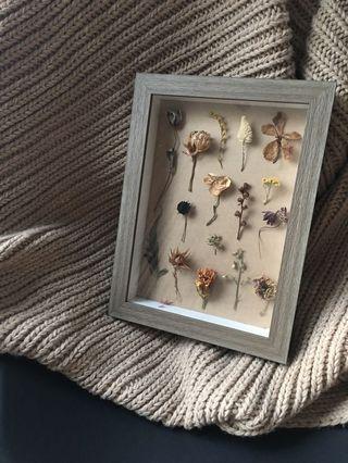 🚚 Plant herbarium A4 Photo Frame